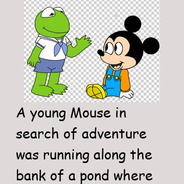 A Frog & A Mouse