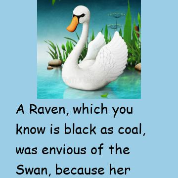 A Raven And A Swan