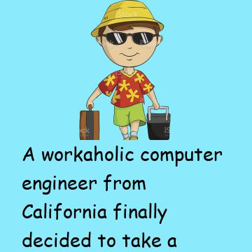 A Workaholic Computer Engineer Finally Decided To Take A Vacation