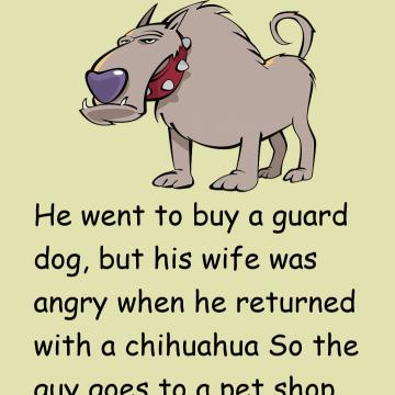 He Went To Buy A Guard Dog