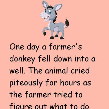 Lesson Taught By The Donkey