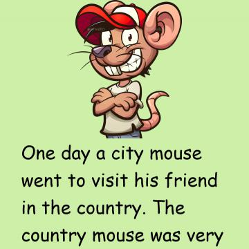 The City Mouse & The Country Mouse
