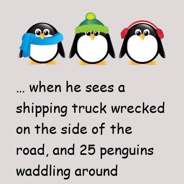 The Story Of The Missing Penguins