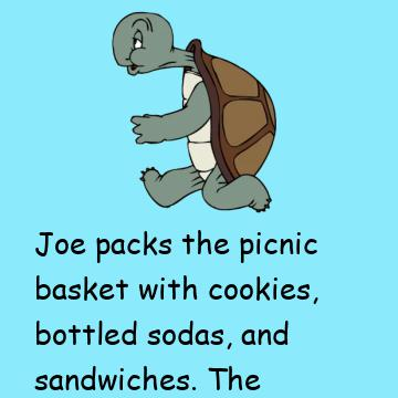 Three Turtles Decide To Go On A Picnic
